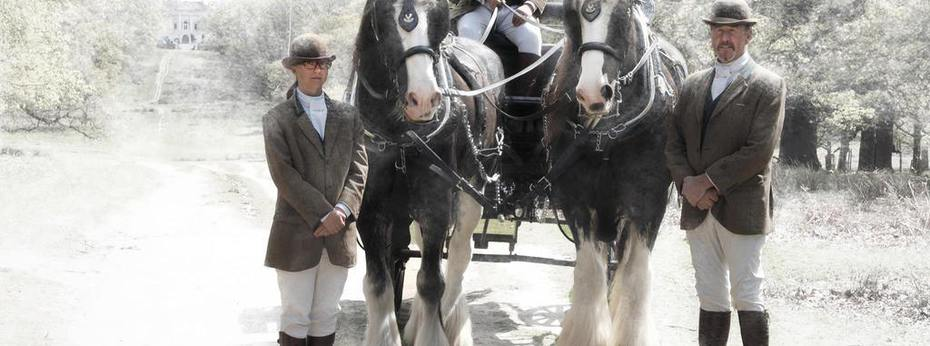 snow_image_horses_banner